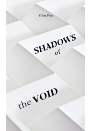 Shadows of the Voide