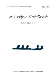 A Letter Not Sent